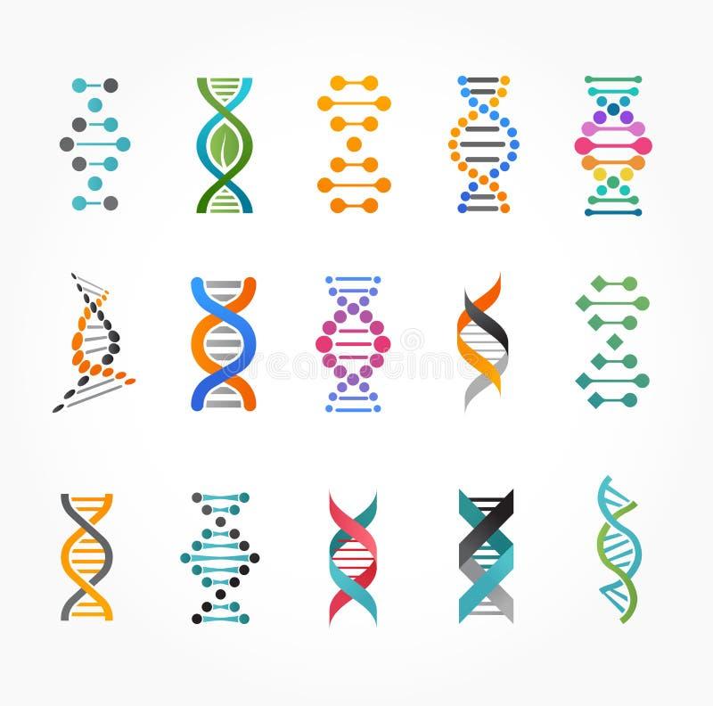 ADN, elementos genéticos e coleção dos ícones ilustração do vetor