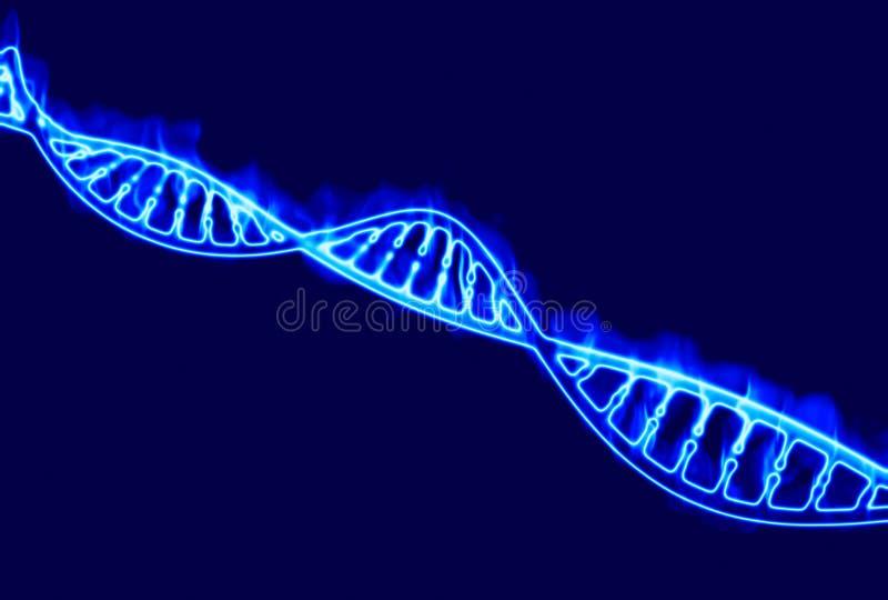 ADN, hélice brûlante d'ADN, acide désoxyribonucléique est un acide nucléique qui contient l'information génétique pour le dévelop illustration de vecteur