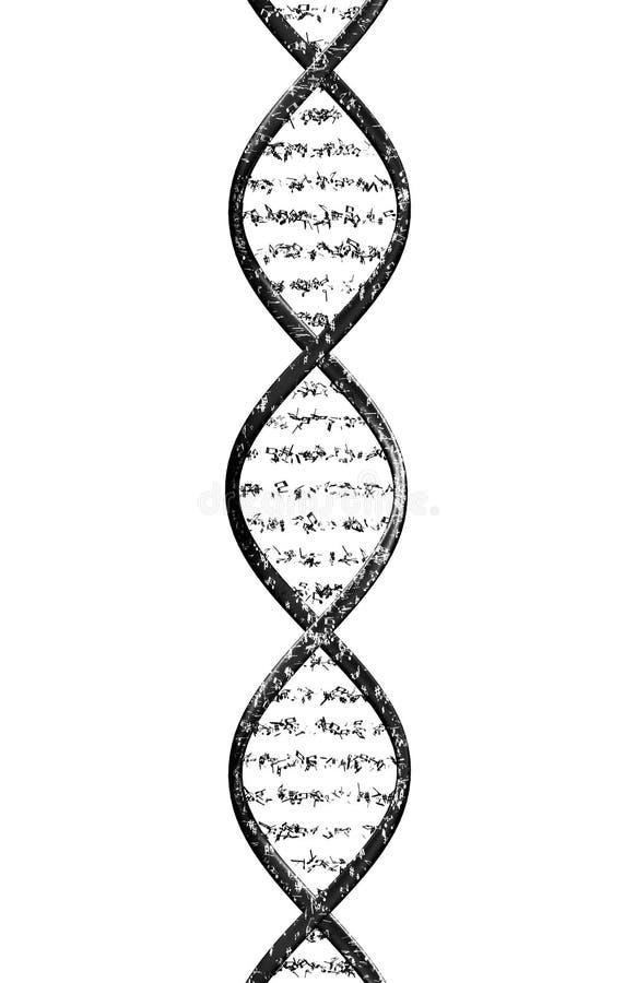 ADN musical ilustração royalty free