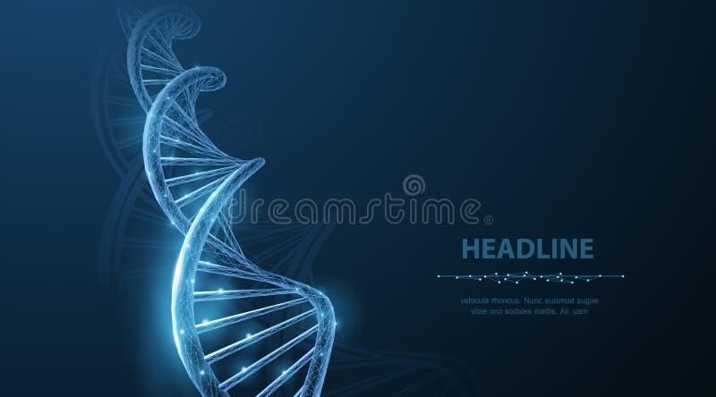 ADN Spirale polygonale abstraite d'hélice de molécule d'ADN du wireframe 3d sur le bleu illustration libre de droits