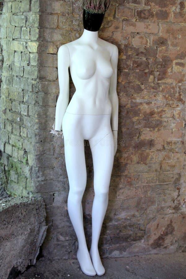 Żadny głowa mannequin zdjęcia royalty free
