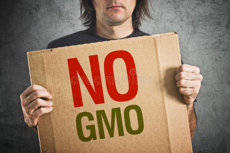 Żadny GMO. zdjęcia stock