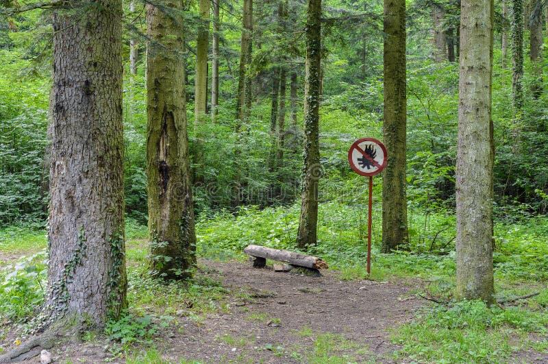 Żadny ogienie pozwolić w lesie obrazy stock