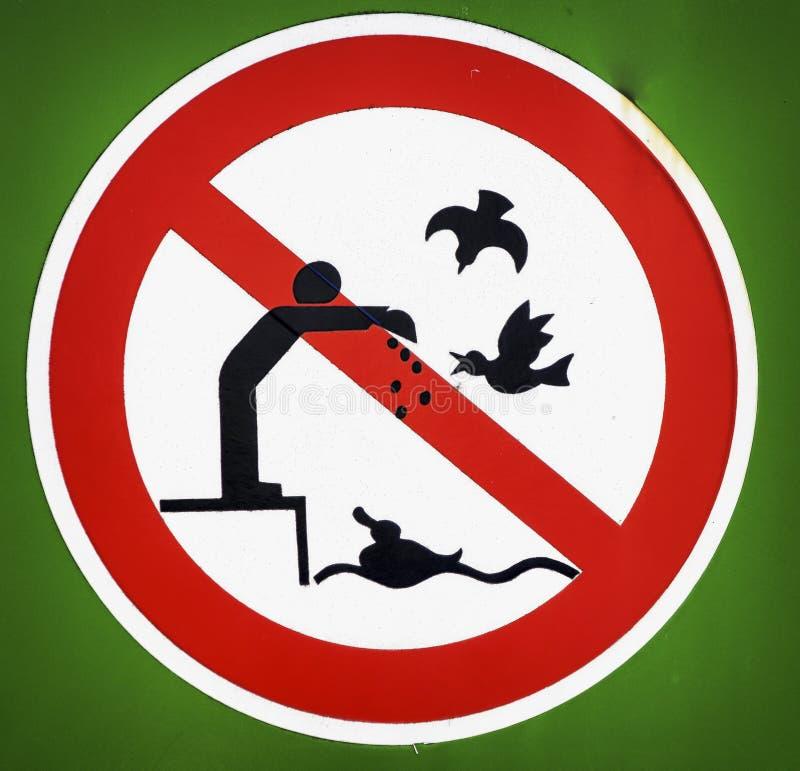 Żadny ptasi karmienie obrazy stock
