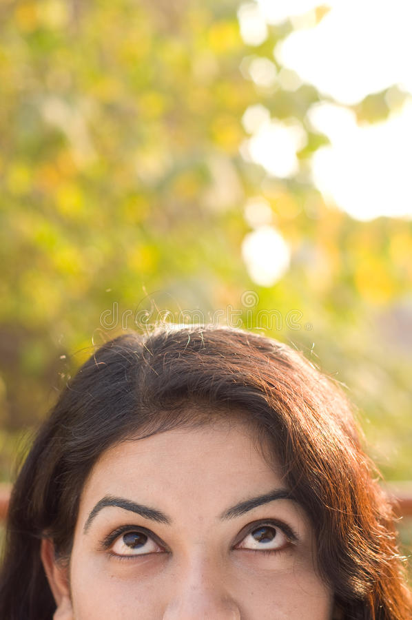 Adolescente americano asiático fotografia de stock