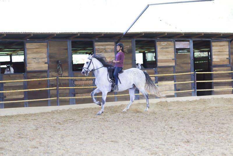 Adolescente bonito que monta um cavalo imagens de stock royalty free