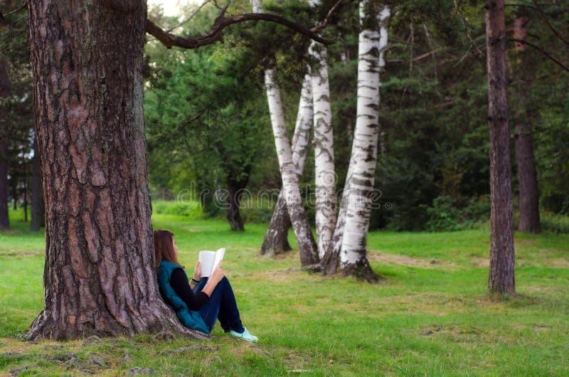 Adolescente che si siede sotto il libro di lettura e dell'albero fotografia stock libera da diritti