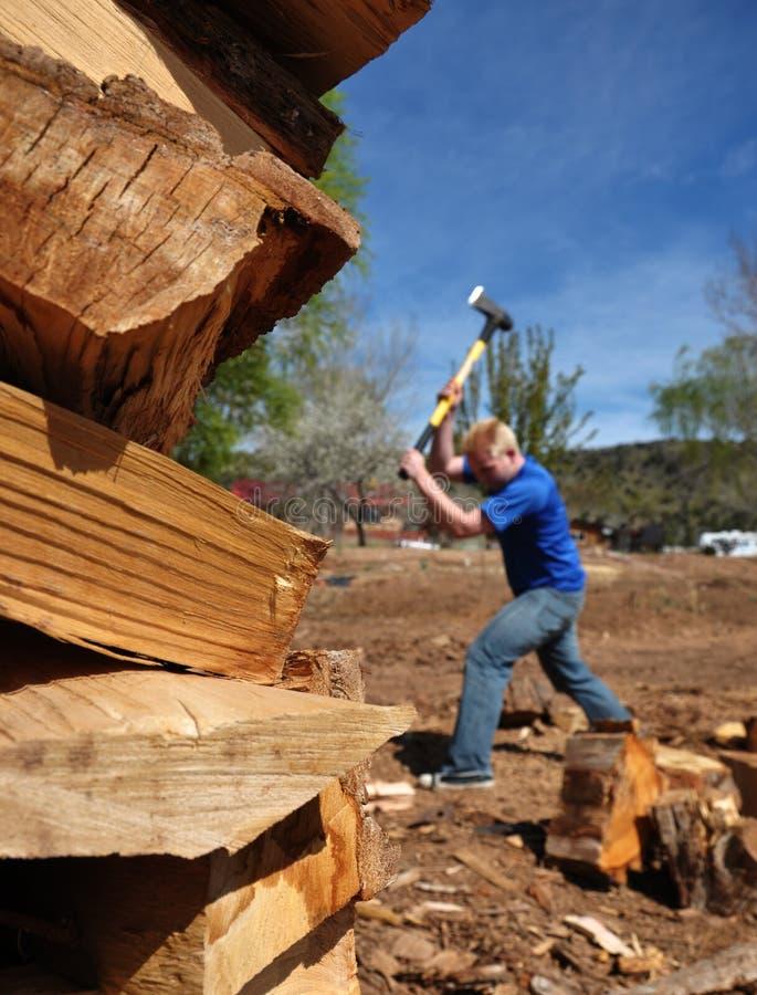 Adolescente che taglia legno a pezzi immagini stock