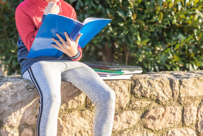 Adolescente com os livros de texto e os cadernos que fazem trabalhos de casa e que preparam-se para o exame no parque imagem de stock