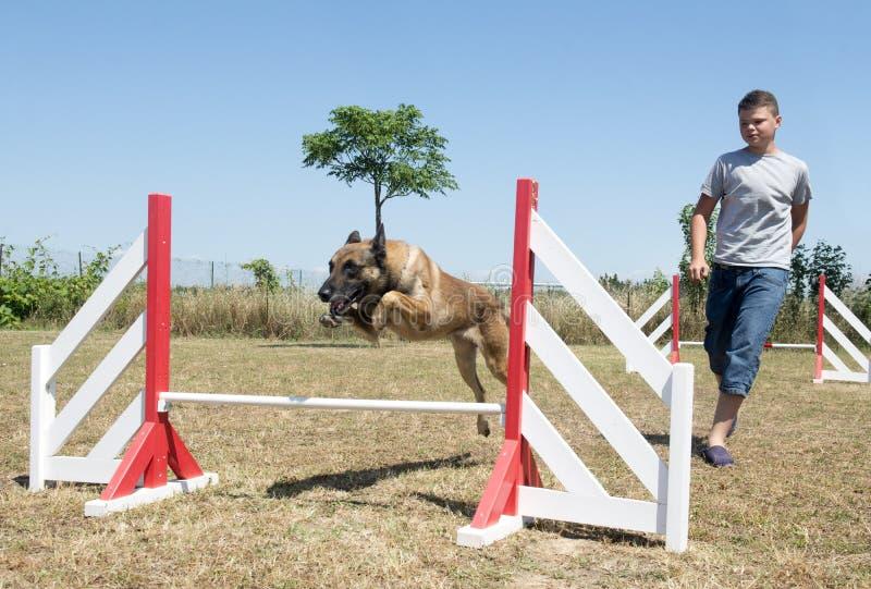 Adolescente e cão na agilidade imagens de stock