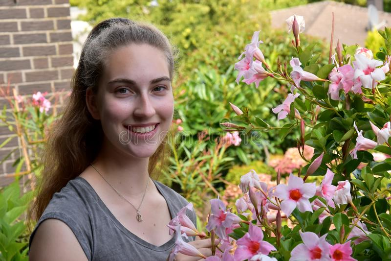 Adolescente e mandevilla cor-de-rosa foto de stock royalty free