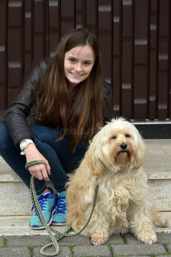 Adolescente e seu cão pequeno doce do tiver foto de stock royalty free