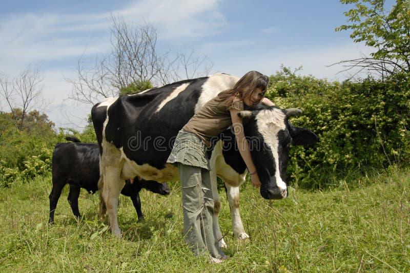 Adolescente e vaca foto de stock