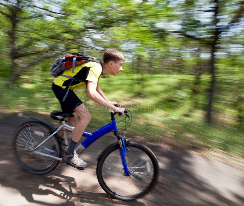 Adolescente em uma bicicleta que viaja na floresta fotografia de stock