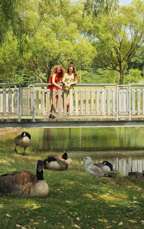Adolescente em uma ponte imagens de stock royalty free