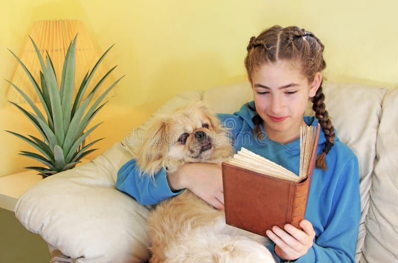 Adolescente heureuse avec le chien pekingese images libres de droits