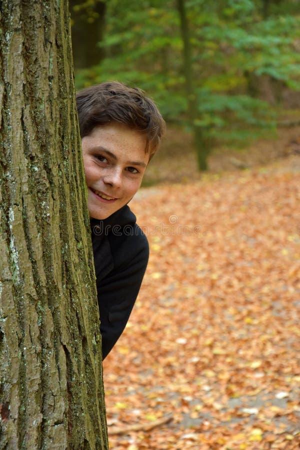 Adolescente na floresta do outono fotos de stock
