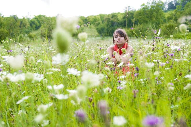 Adolescente no campo de flor foto de stock royalty free