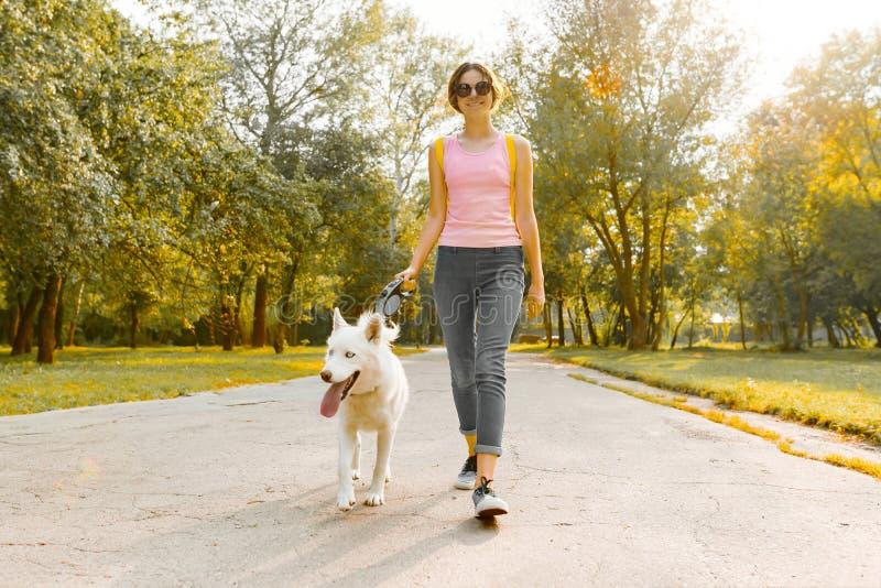 Adolescente novo que anda com um cão de puxar trenós branco do cão na estrada no parque fotografia de stock