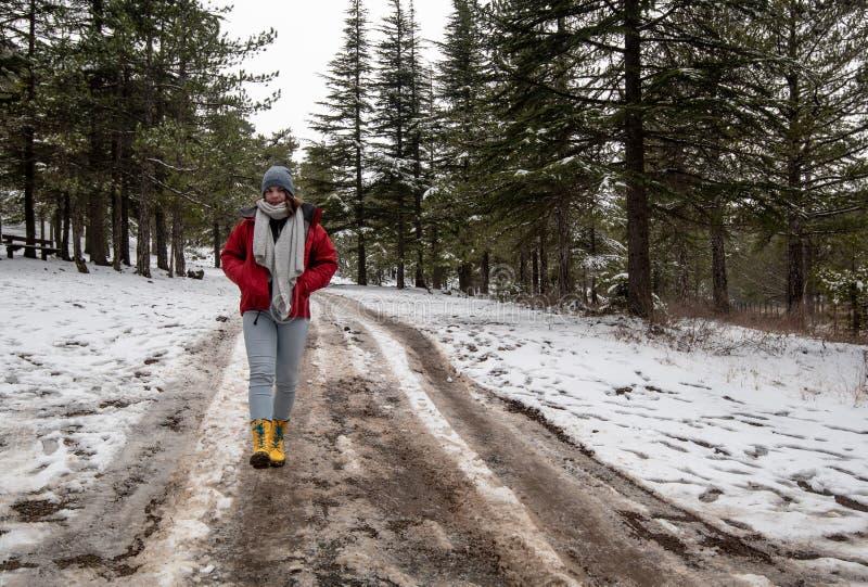 Adolescente novo que anda em uma estrada congelada em montanhas de Troodos em Chipre foto de stock royalty free