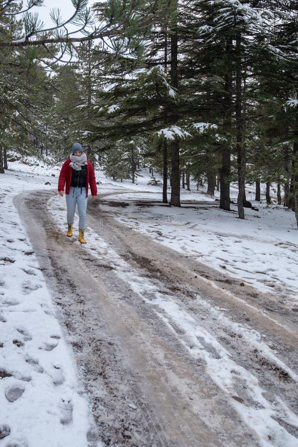 Adolescente novo que anda em uma estrada congelada em montanhas de Troodos em Chipre foto de stock