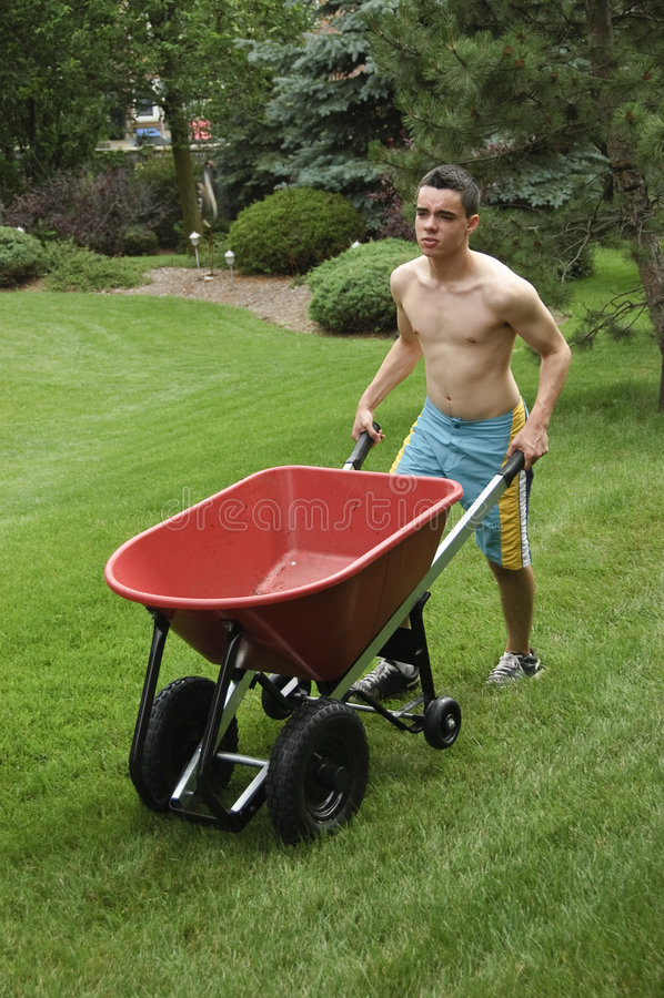 Adolescente que empurra o wheelbarrow imagem de stock