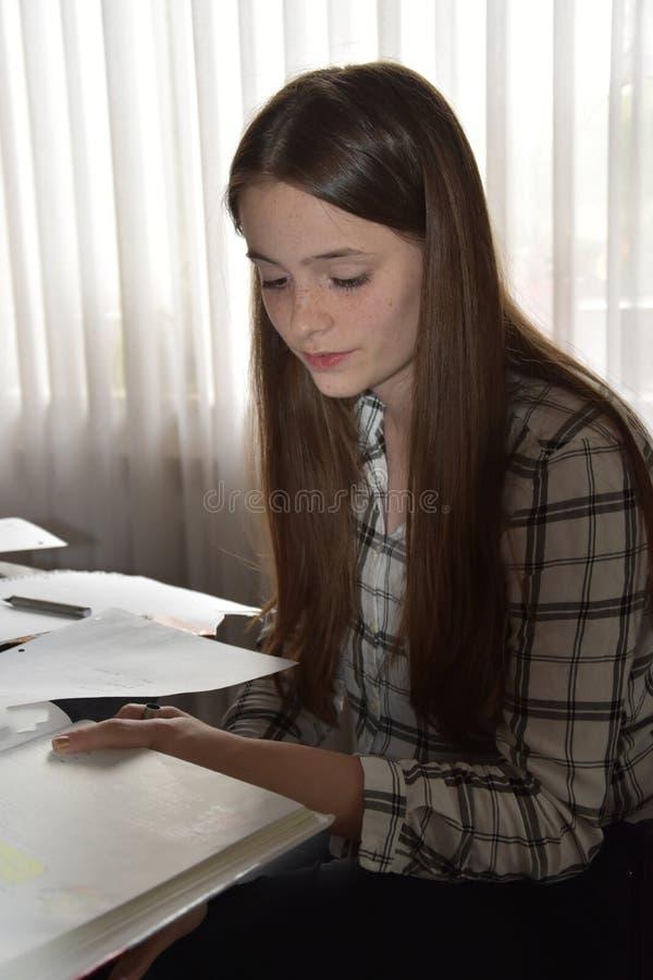 Adolescente que faz seus trabalhos de casa das matem?ticas foto de stock royalty free