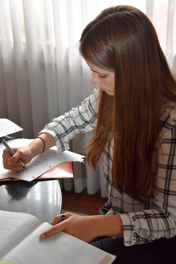 Adolescente que faz seus trabalhos de casa das matem?ticas imagem de stock