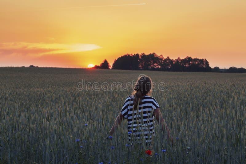 Adolescente sul campo di estate alla luce calda di tramonto fotografia stock libera da diritti