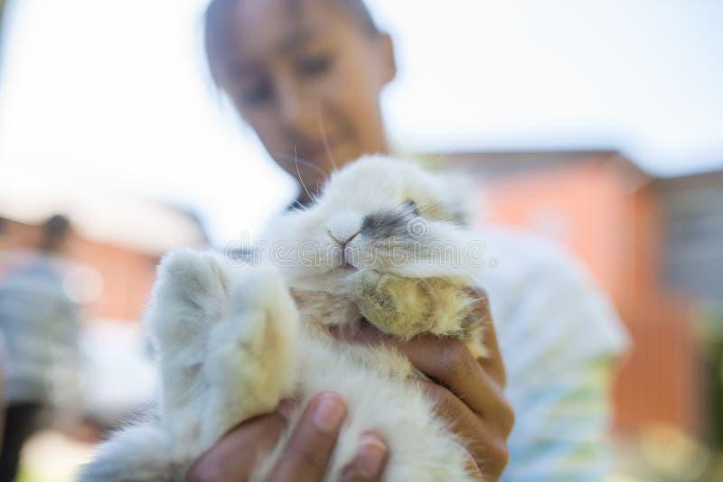 Adolescente tenant le lapin velu mignon images libres de droits