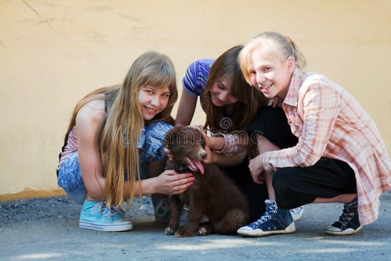 Adolescentes com um filhote de cachorro imagens de stock