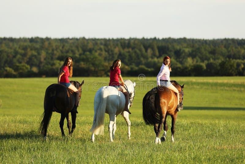 Adolescentes en el caballo que camina en prado por tarde sin la silla de montar, mirando detrás fotos de archivo