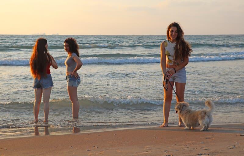 Adolescentes heureuses en mer images libres de droits