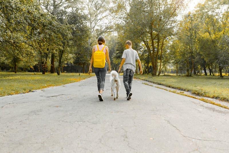 Adolescenti ragazzo dei bambini e ragazza che cammina sulla strada nel parco con un husky bianco del cane, vista posteriore fotografia stock libera da diritti