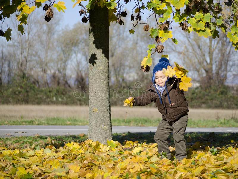 Download Adorable Autumn Baby Playing Stock Photo - Image: 35539764