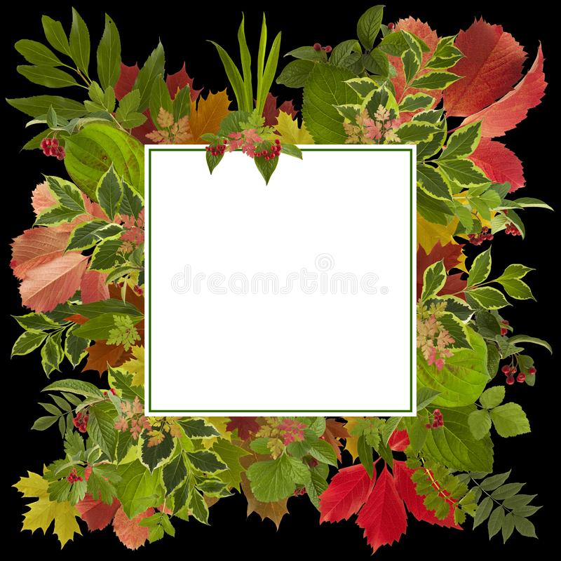 Adorable autumn leaves background royalty free illustration