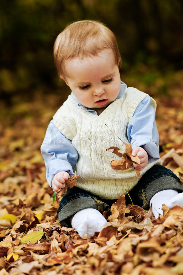Adorable baby boy sitting in leaves royalty free stock photo