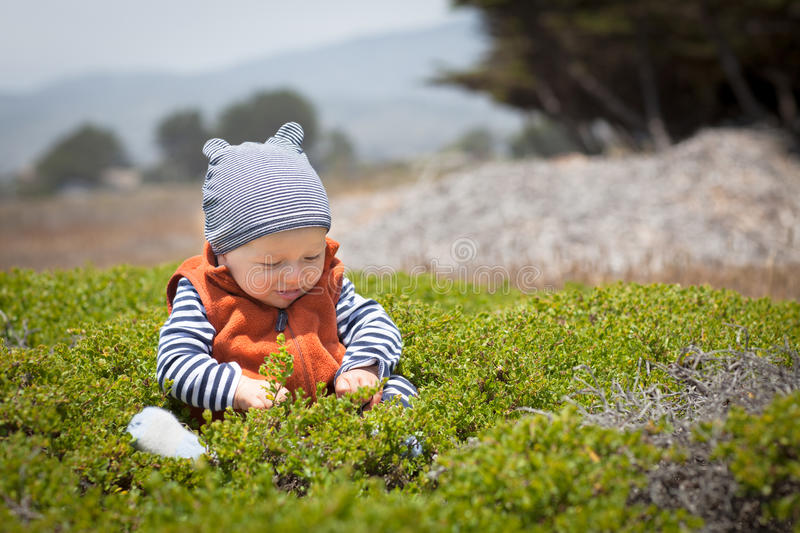 Adorable baby sitting in green bushes stock photos