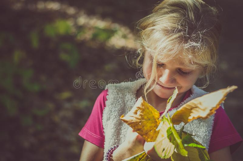 Adorable blond girl with orange leaves stock photography