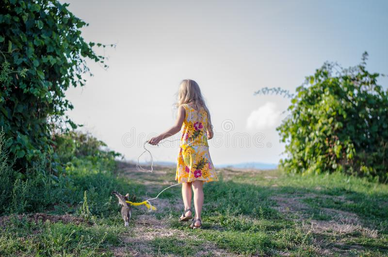 Little child walking with cat in lead stock photo