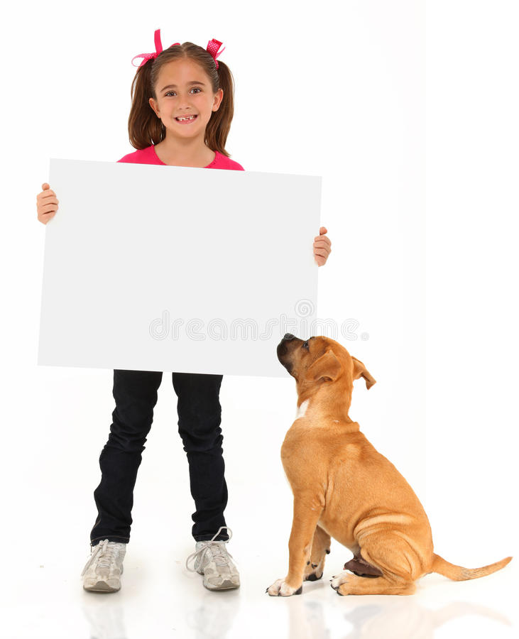 Adorable Boxer and Girl with Sign stock photos