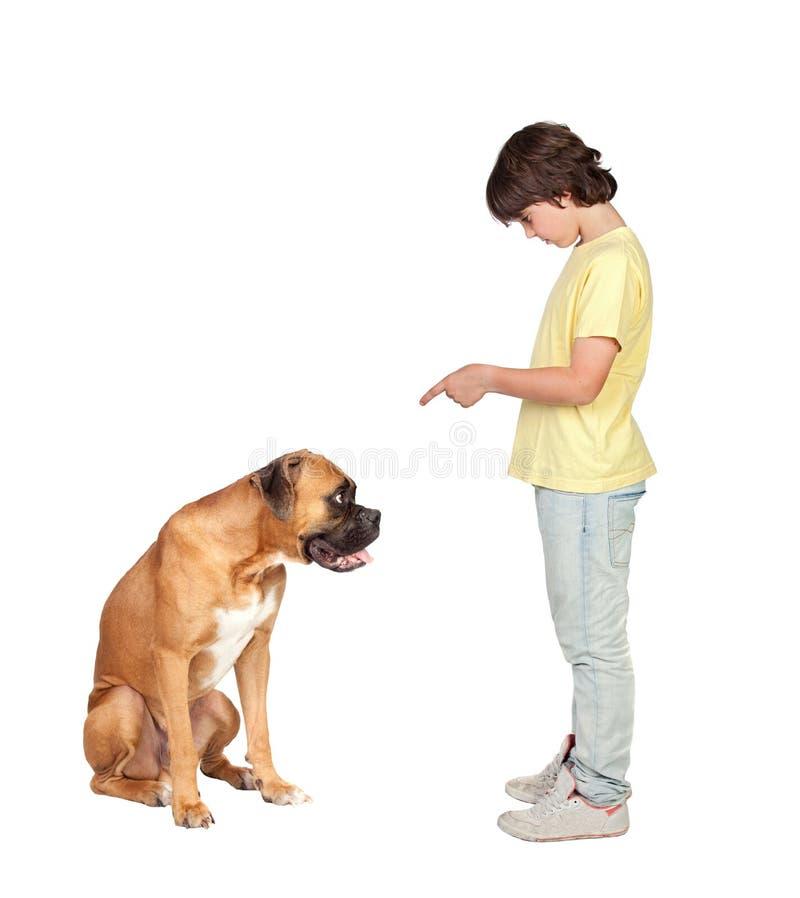 Download Adorable boy and his dog stock photo. Image of animal - 14858790