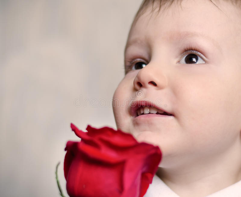 Adorable cherubic little boy with a red rose. Closeup of the face of an adorable cherubic little boy with a red rose looking upwards with tender wide eyes and royalty free stock images