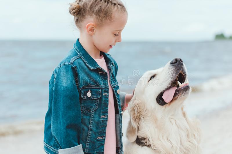 adorable child with friendly golden retriever dog royalty free stock photography