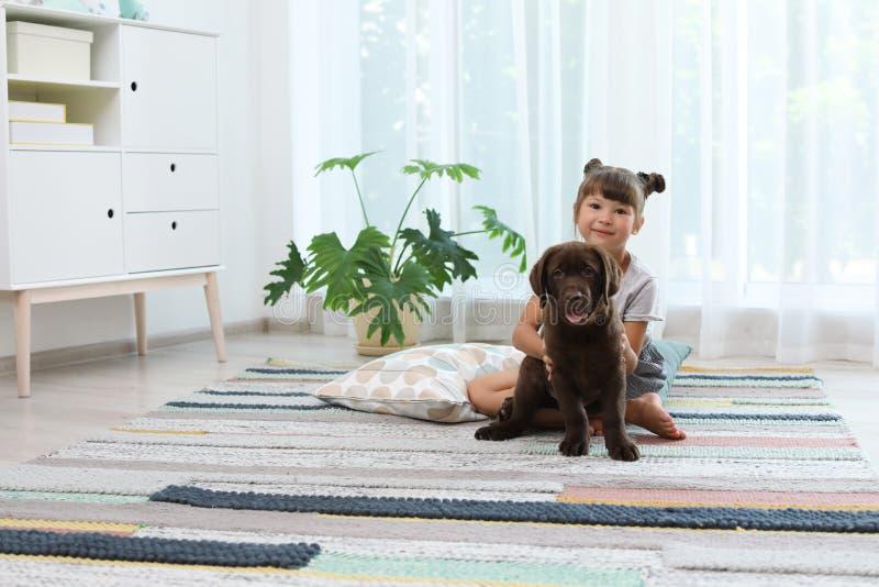Adorable chocolate labrador retriever and little girl. At home stock photos