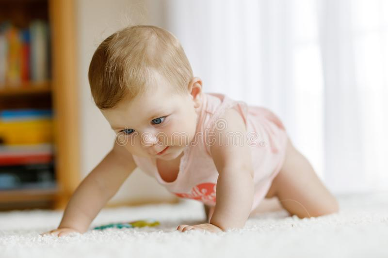 Little funny baby girl lifting body and learning to crawl. stock photography