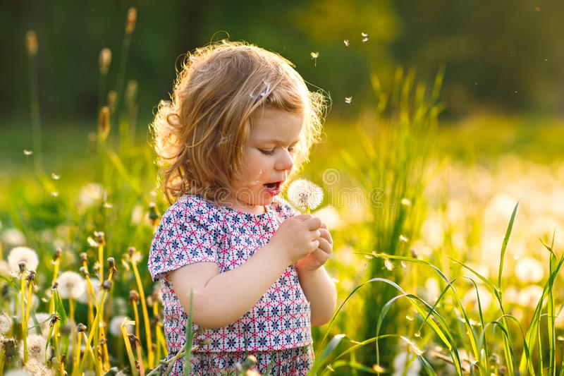 Adorable cute little baby girl blowing on a dandelion flower on the nature in the summer. Happy healthy beautiful stock image