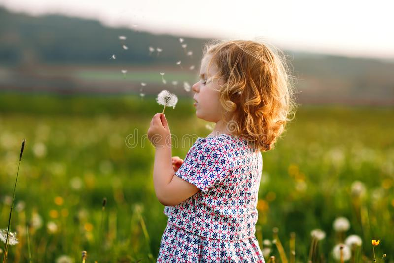Adorable cute little baby girl blowing on a dandelion flower on the nature in the summer. Happy healthy beautiful royalty free stock images