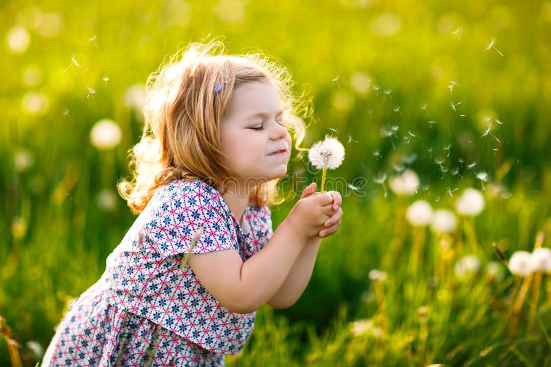Adorable cute little baby girl blowing on a dandelion flower on the nature in the summer. Happy healthy beautiful royalty free stock photos