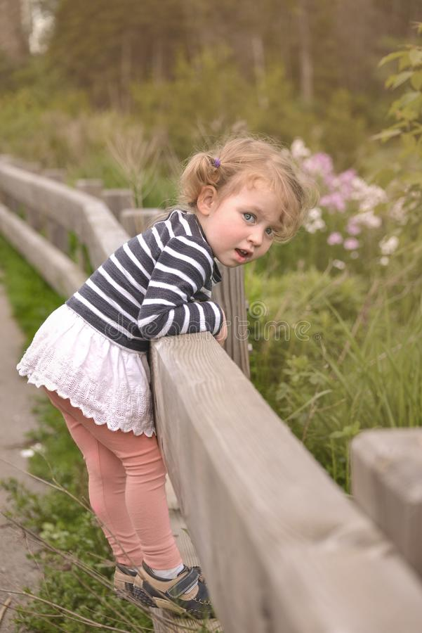 Adorable cute little Caucasian girl leanы on the fence. She looks on the camera stock photography
